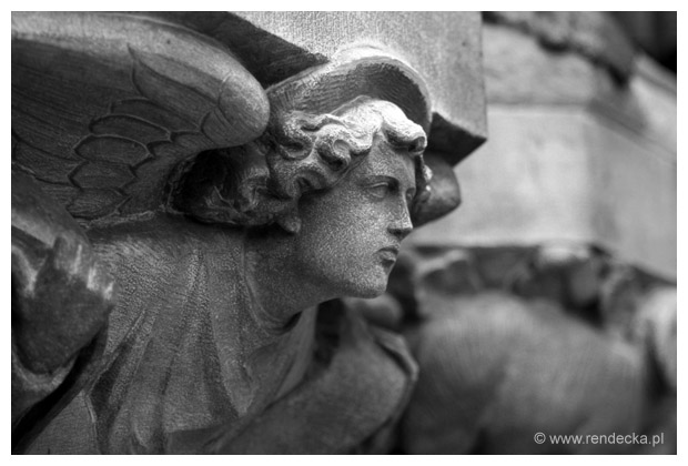 Katedra w Cork, detal I