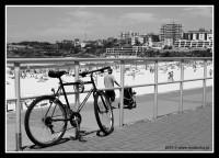 Trzydziesty piąty rower australijski / 35th Australian Bicycle, Sydney, Bondi Beach, 19.02.2010