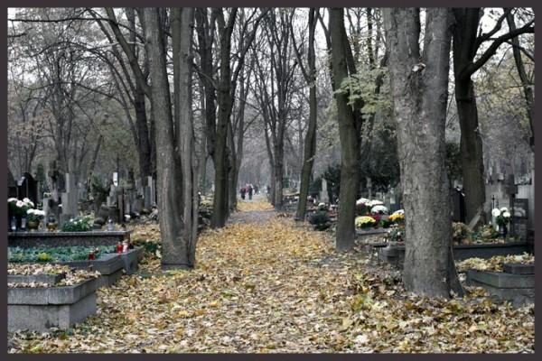 Święto Zmarłych, 01.11.2009, Powązki